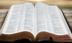 IMAGEN DE LA BIBLIA / BIBLE IMAGE