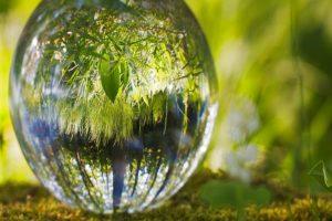 IMAGEN DEL AMBIENTE / Environment Image