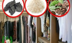 IMAGEN DE COMO SE QUITA EL MOHO DE LA ROPA / how to remove mold from clothes image