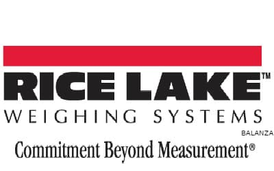 RICE LAKE SCALE: Prices, Reviews and Offers at Amazon