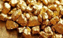 IMAGEN DE COLOR ORO / GOLD COLOUR IMAGE